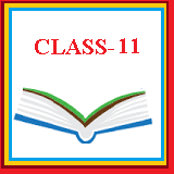 Solution for Class 11